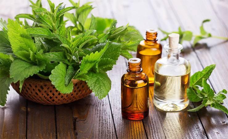 tea-tree-essential-oil-4