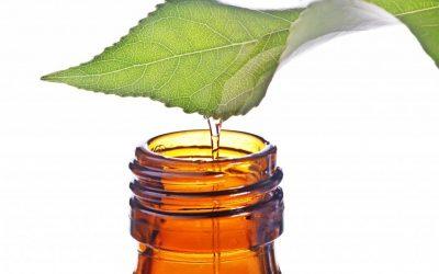 tea-tree-oil-bottle-1