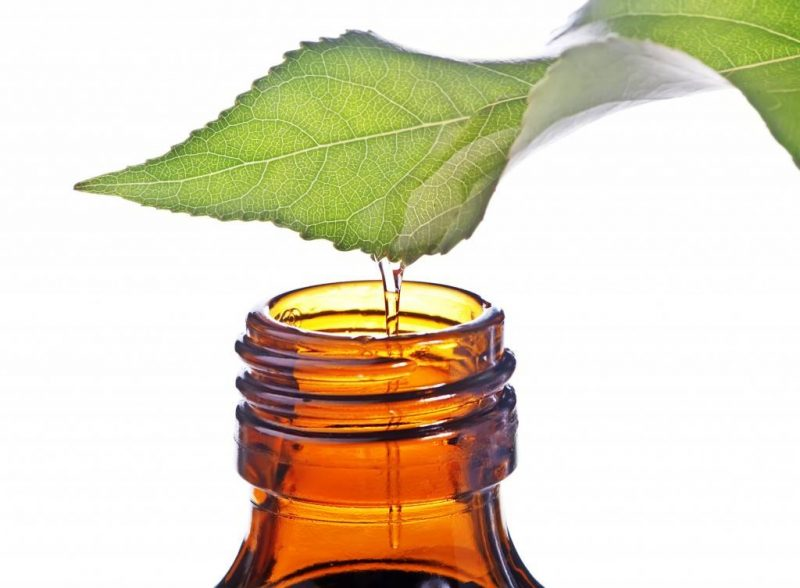 tea-tree-oil-bottle-1